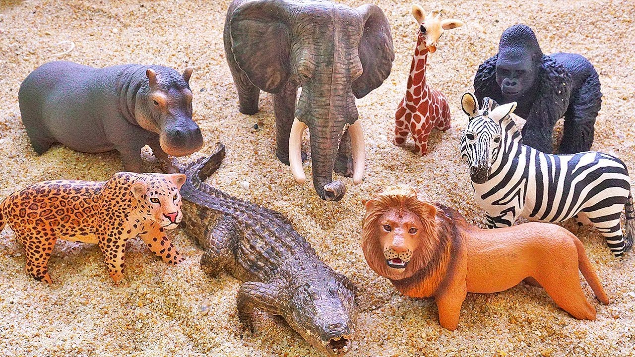 learn zoo animals | Toys and Games